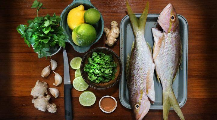 Vieques Fish