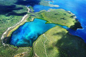 Vieques-PR-Biobay Conservation