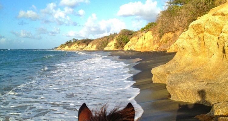Vieques on Horseback